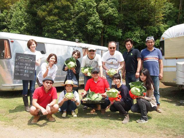 画像6: 春キャベツに空豆の収穫と害獣対策!すでにイノシシの痕跡が…【2018.5.27】
