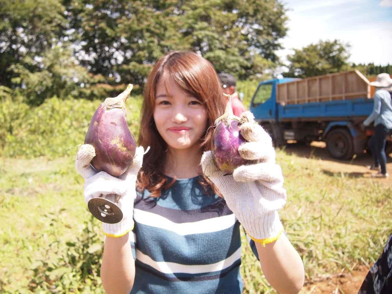 画像4: Farming Garden in リソル生命の森 イベントリポート