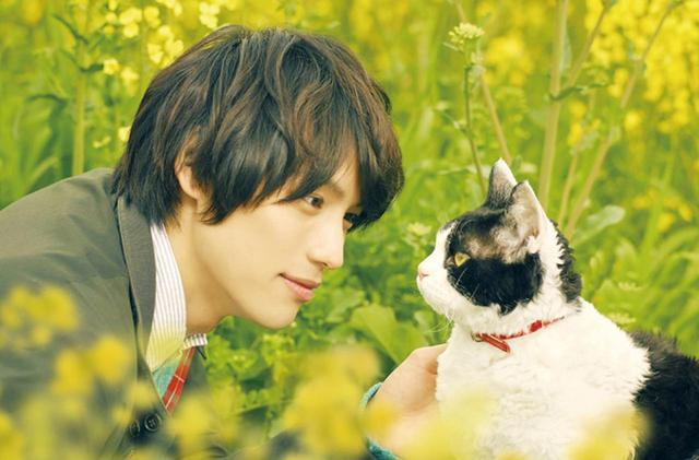 画像: ©2018「旅猫リポート」製作委員会 ©有川浩/講談社 松竹配給