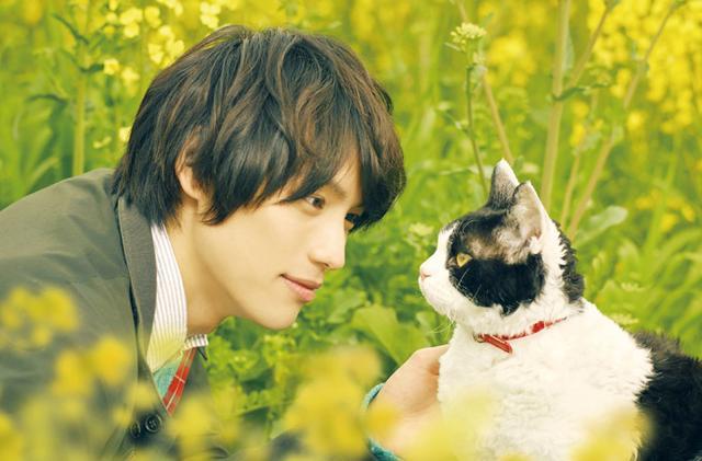画像: 映画『旅猫リポート』完成記念プレミアイベントに3組6名  - 楽懸