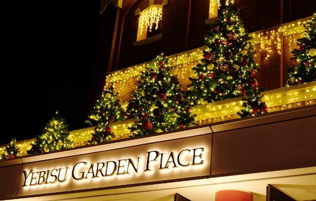 画像: 恵比寿ガーデンプレイスにきらめき、冬のイルミ灯る