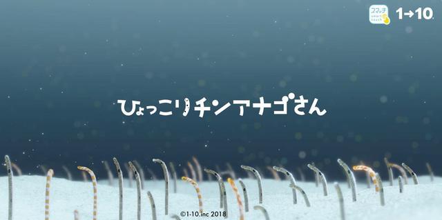 """画像: ゆらゆら、ひょっこり""""チンアナゴさん""""にタッチ!/11月9日(金)の東京イベント"""