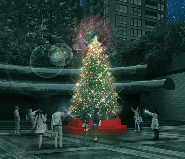 画像: 高さ約7m!本物のもみの木のツリーで祝うクリスマス