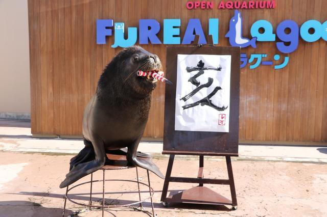 画像: 今年の干支「亥」をオタリアが豪快に書き上げる!/1月1日(火・祝)の東京イベント
