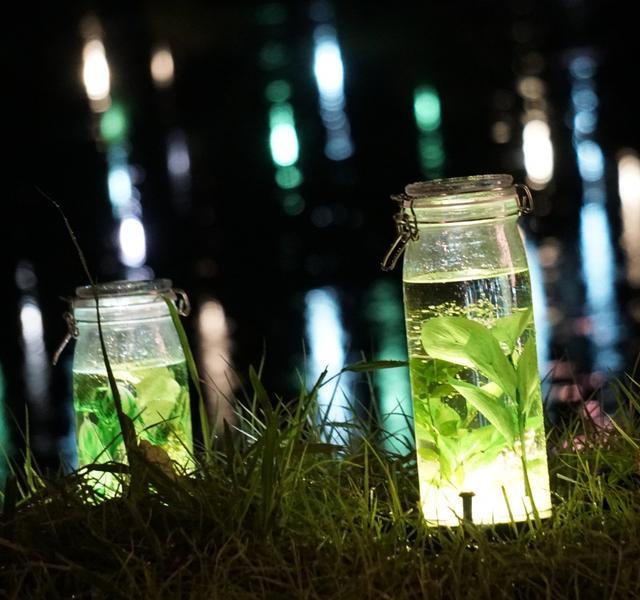画像: 光るハーバリウム400個! 夜の日比谷公園が幻想的/7月13日(土)の東京イベント