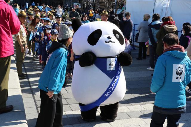 画像: 3・28「EARTH HOUR 2020」へ向け60体のパンダのぬいぐるみが出陣式