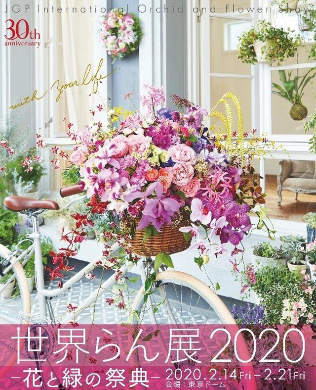 画像: 30周年記念開催に世界中の希少ならんが集結!「世界らん展2020 −花と緑の祭典−」