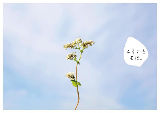 画像: 福井とそばの魅力伝えるフリーペーパー『ふくいとそば。』発行 ! EXILEの橘ケンチらLDH ASIAが制作