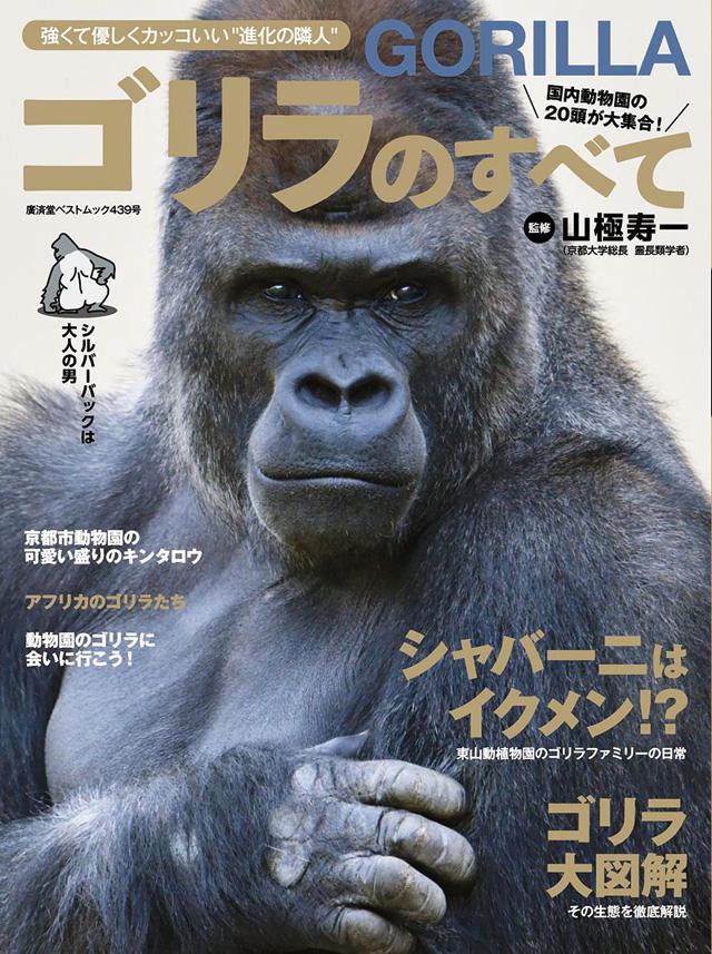 画像: 社会性は人間顔負け!『ゴリラのすべて』【TOKYO HEADLINEの本棚】