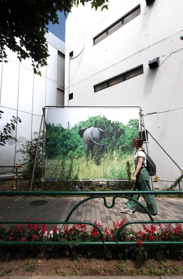 画像: 東京の過去、現在、未来を見つめる「アイラブアート15 生きている東京展」