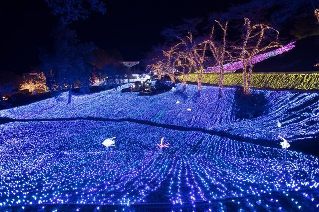 画像: 関東エリアを代表する人気イルミネーションもコロナを越えて開催へ!「さがみ湖イルミリオン」