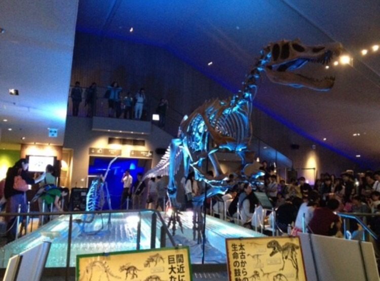 画像4: 生田晴香が2014年夏に行けた恐竜イベント