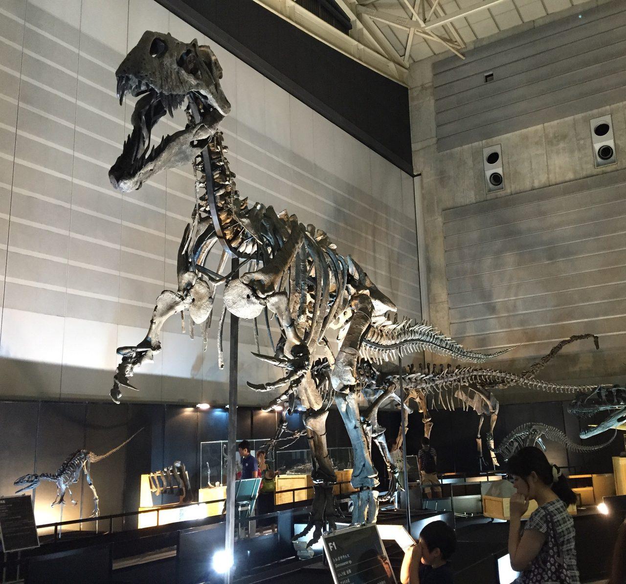 画像: トルボサウルス
