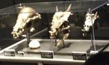 画像: 2014年のヨコハマ恐竜展でのパキケファロサウルス頭骨