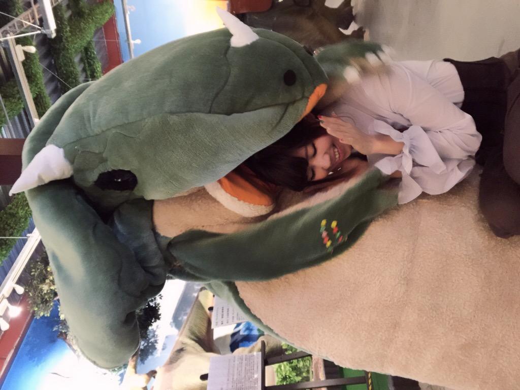 画像: コペルチーナさんは他のトリケラトプスと違い二足歩行できます。