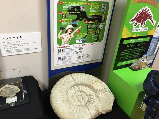 画像: 2015年新宿での恐竜イベントで撮影