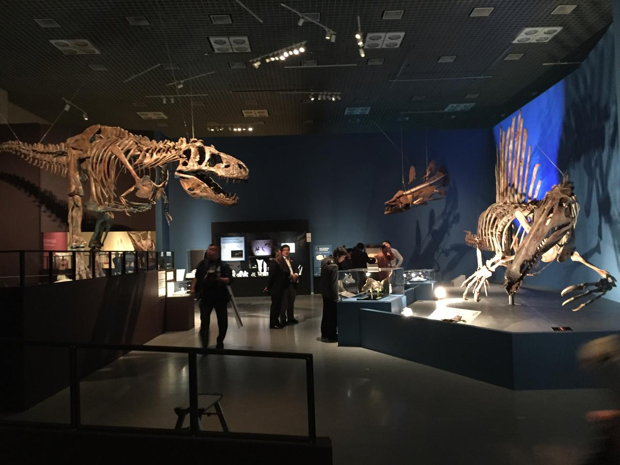 画像: 左がティラノサウルス。右がスピノサウルス。