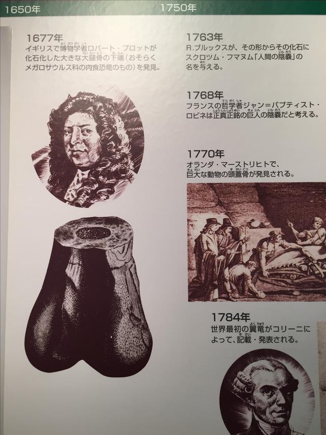 画像1: 福井県立恐竜博物館で撮影。