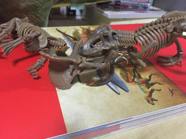 画像: 左、トリケラトプス。右、ティラノサウルス。
