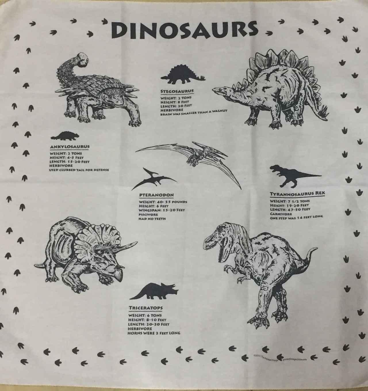 画像: 新宿ルミネで購入、恐竜バンダナ