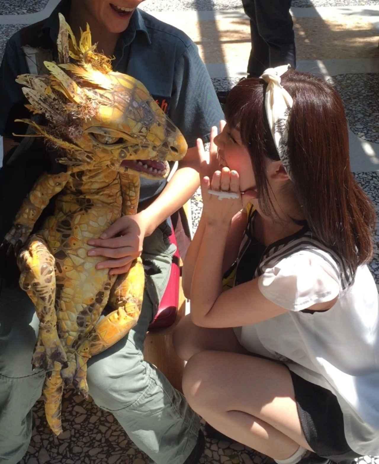 画像: どの恐竜かわからず並んでいたら赤ちゃん恐竜でした。