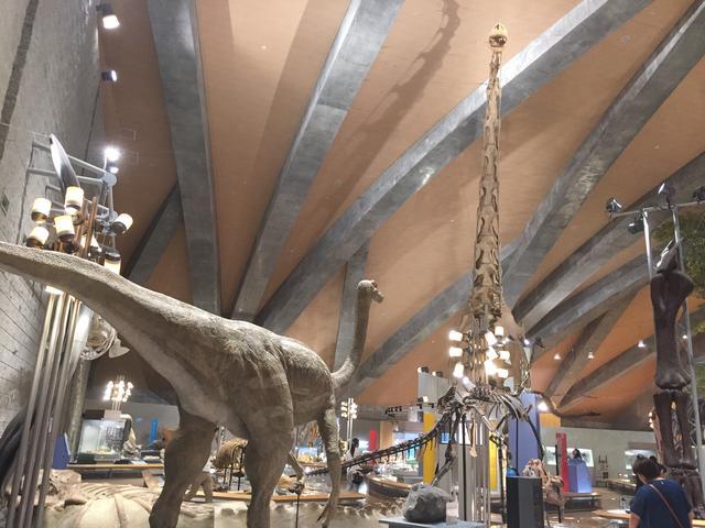 画像: 画像にはいませんがティラノサウルスもいます!