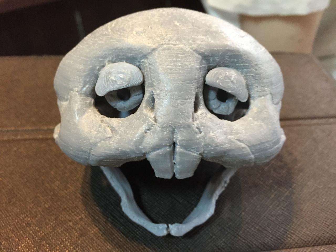 画像: ガチャピン頭骨