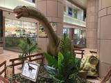 画像: 入口前のカマラサウルス