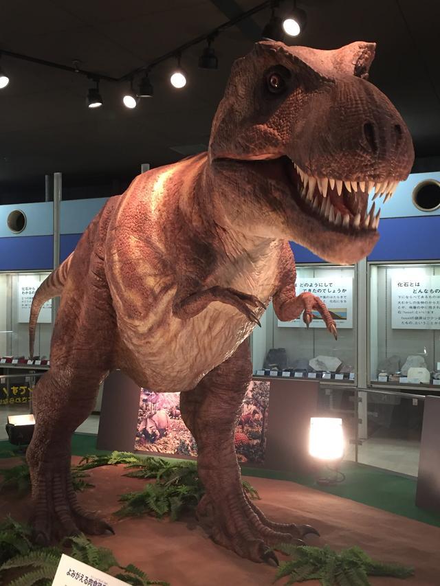画像: 恐竜グッズの世界的平和なおすすめ商品名