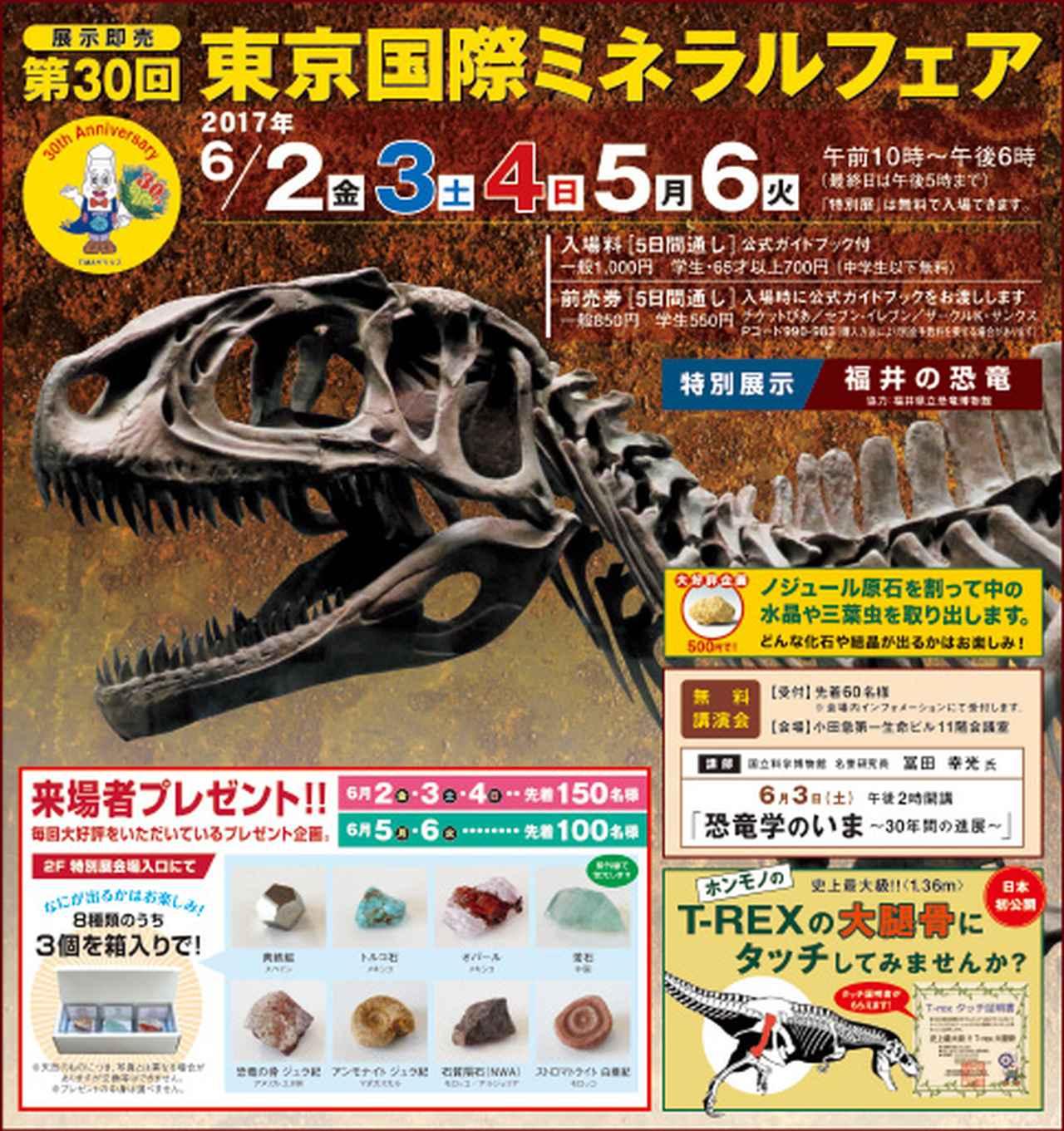 画像: tima.co.jp