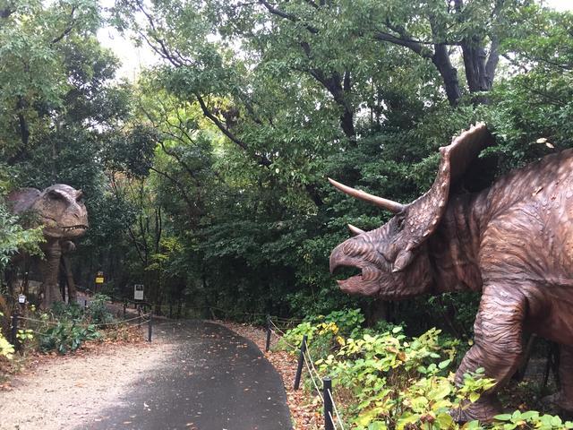 画像: これこそティラノサウルスとトリケラトプス