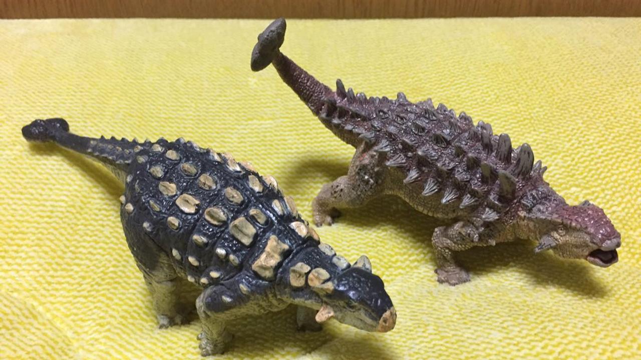画像: アンキロサウルスフィギュア
