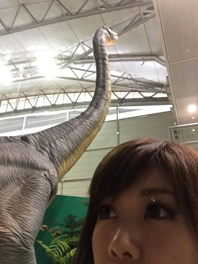 画像1: カミナリ竜とは!!