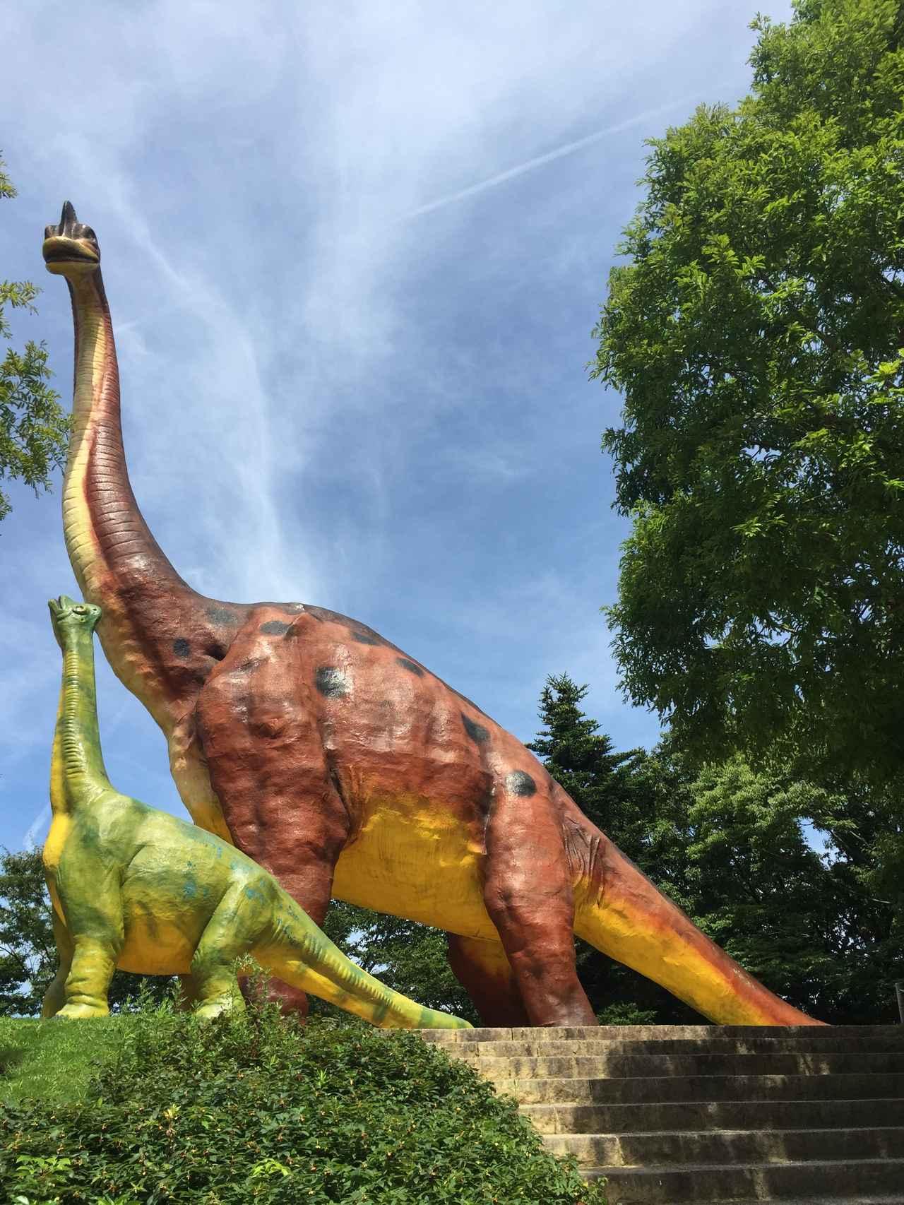 画像2: カミナリ竜とは!!