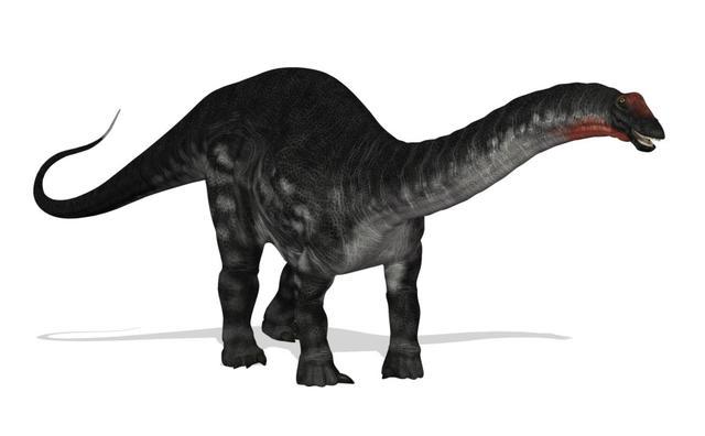 画像: アパトサウルス www.kyouryu.info