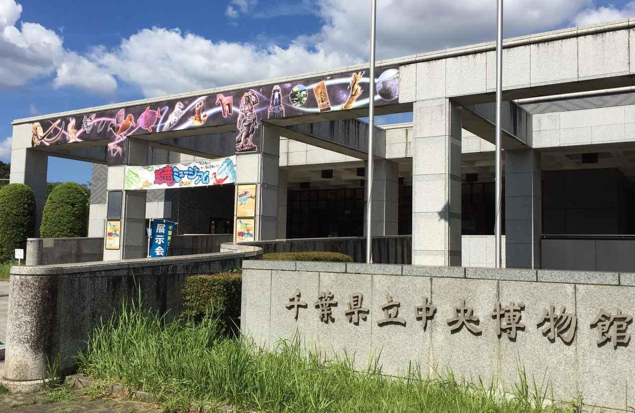 画像1: 恐竜ミュージアム in ちば - 千葉県立中央博物館