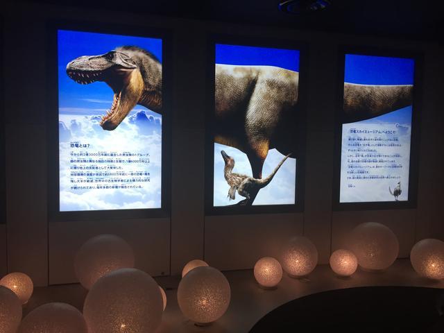 画像2: 恐竜くんプロデュース 恐竜スカイミュージアム~鳥は恐竜だった!~