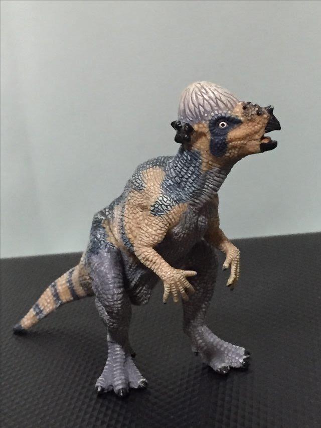 画像: パキケファロサウルス