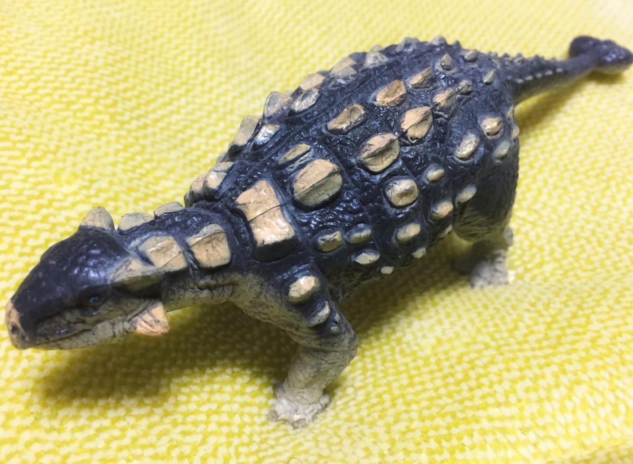 画像: 防御力が高そうな恐竜