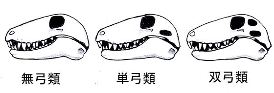 画像: blogs.yahoo.co.jp