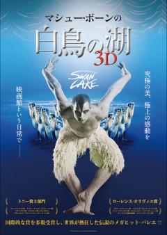 画像: 『マシュー・ボーンの「白鳥の湖」3D』メインアート