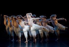 画像: 『マシュー・ボーンの「白鳥の湖」3D』より