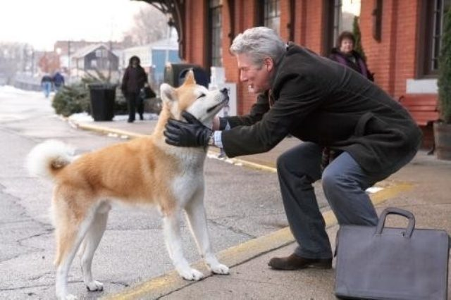 画像: 「HACHI 約束の犬」の一場面 (C)Hachiko,LLC http://eiga.com/news/20150510/6/