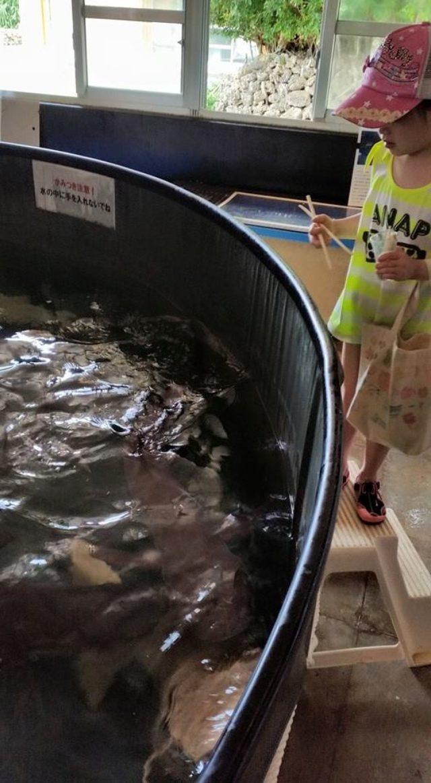 画像: シネフィル新連載:叶井俊太郎式5歳の娘を映画人にする方法 #02『ムカデ人間』を笑いながら見られる、豊かな感性を持つ子に育てる! - シネフィル - 映画好きによる映画好きのためのWebマガジン