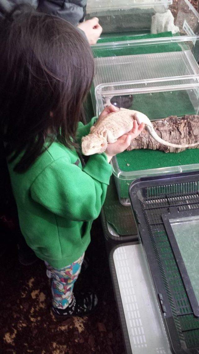 画像: 愛しき爬虫類、、、。 ©kanaishuntaro cinefil-asia