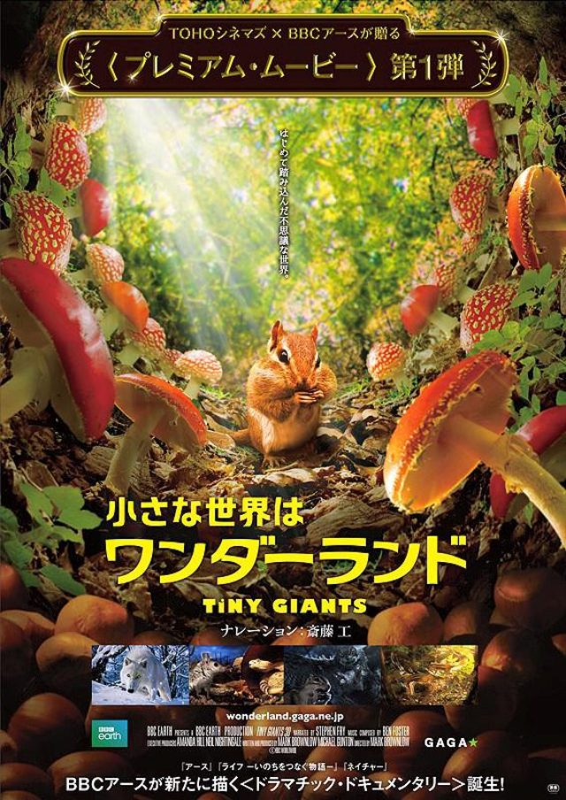 画像: 映画『小さな世界はワンダーランド(原題: Tiny Giants 3D)』
