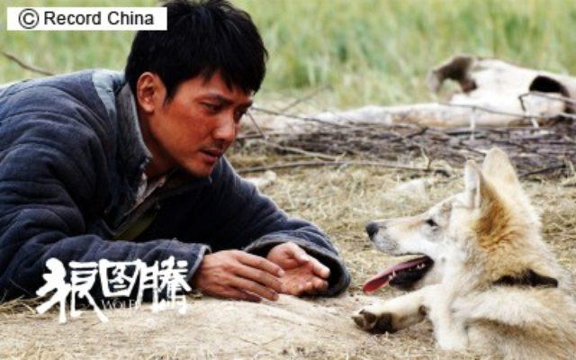 画像: アカデミー賞の中国代表作品は、ジャン=ジャック・アノー監督『神なるオオカミ』に決定! - シネフィル - 映画好きによる映画好きのためのWebマガジン