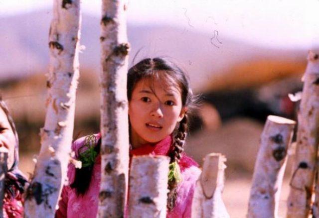 画像1: オススメ中国映画『初恋の来た道』