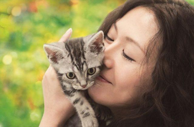 画像: 吉祥寺にゃんこ映画祭『グーグーだって猫である』
