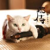 画像1: 日本初!猫の長編映画を集めた『にゃんこ映画祭』吉祥寺で初開催!猫カフェ他にて上映 !